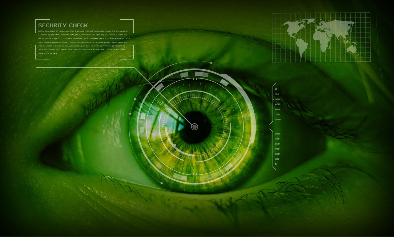 security, safety concept, eyes
